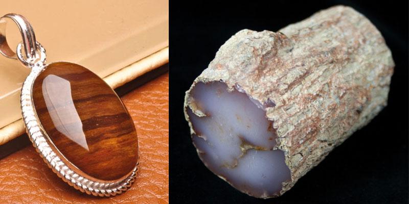 gỗ hóa thạch trang sức hợp mệnh Kim
